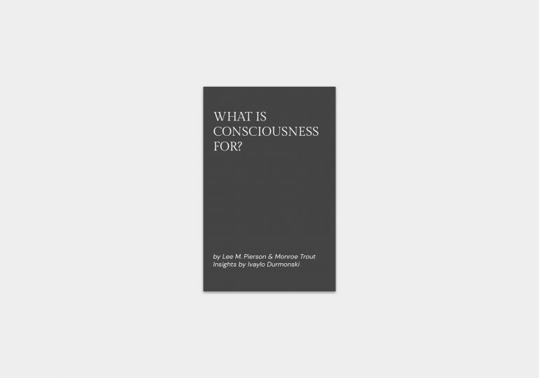 What-is-consciousness-for-lay-summary