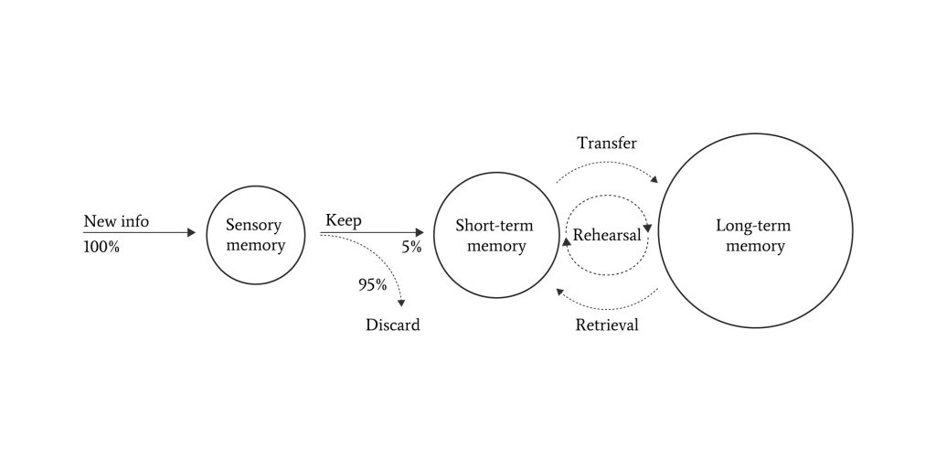 process showing how new info is first processed by the sensory memory